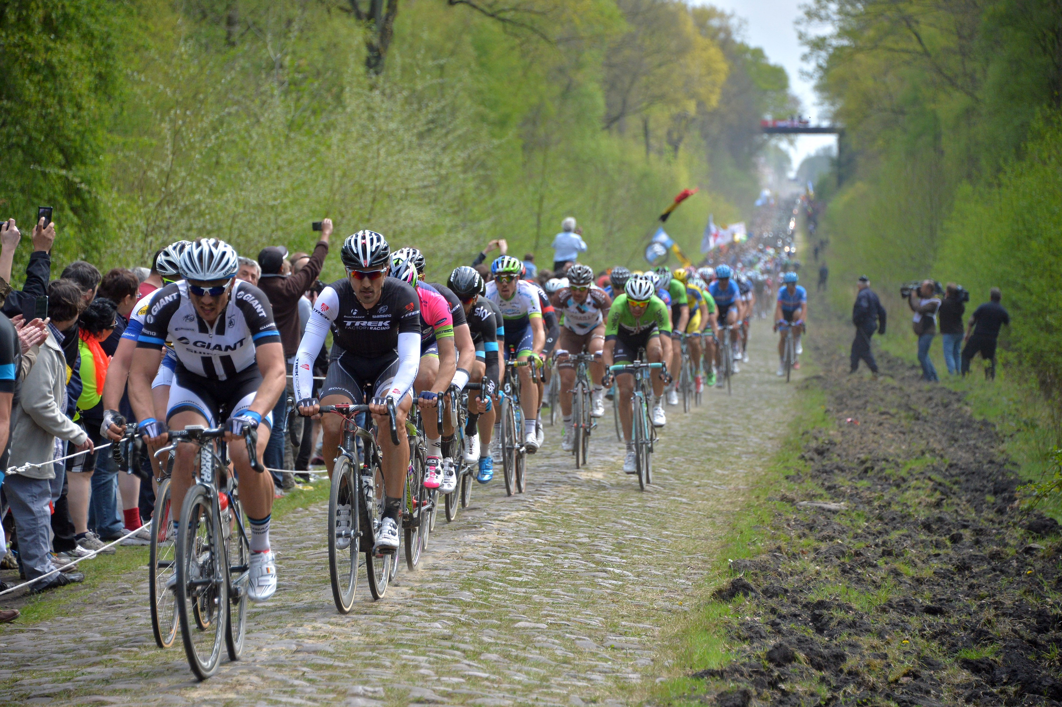 Cycling Tour: Spring Classics