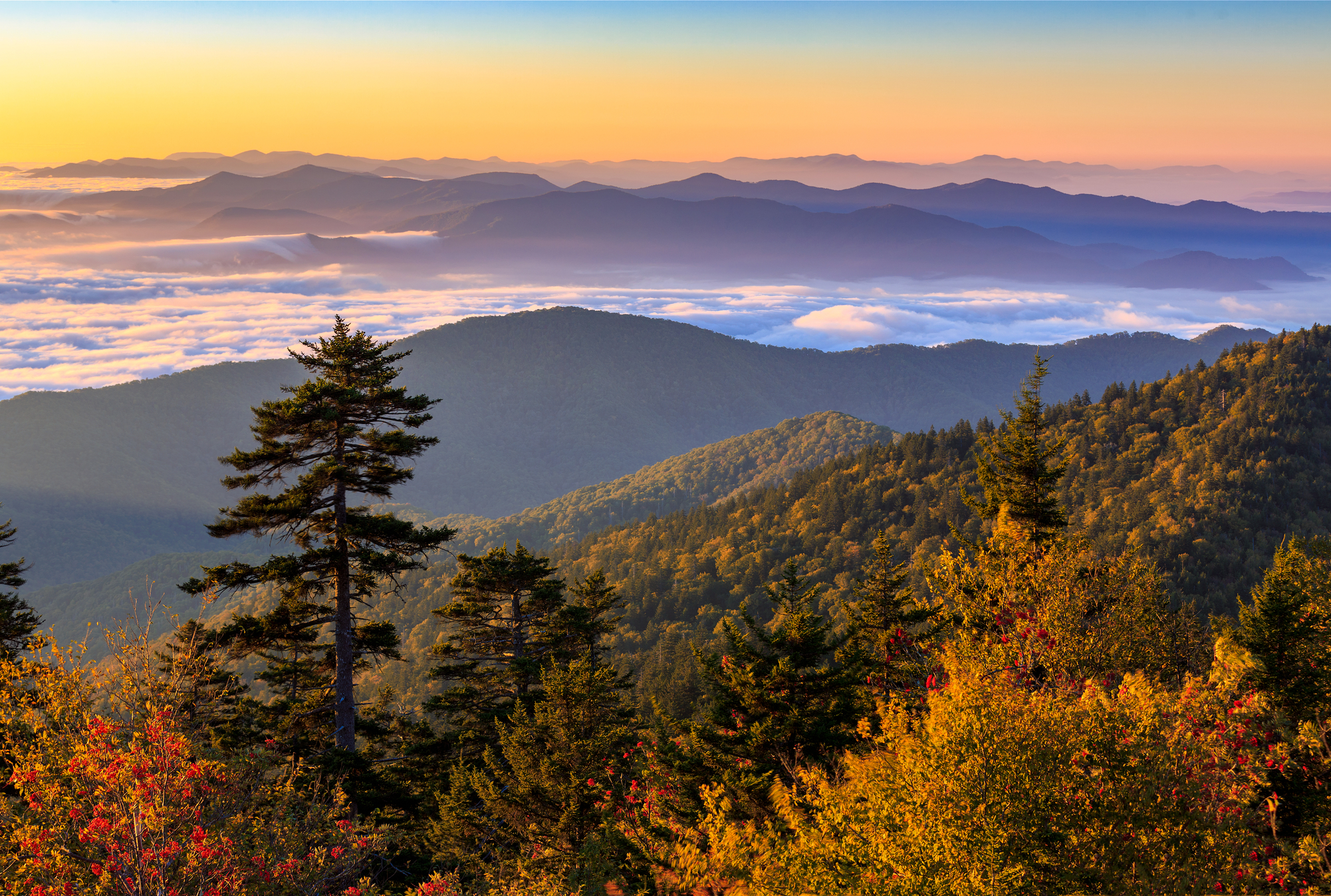 Great Smoky Mountains: May 19-23, 2021